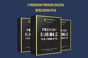 Premium Bundle PLR Products