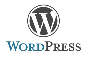 Landingpage Wordpress Hanya 250rb