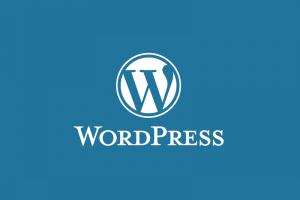 Design Web Wordpress (Divi)